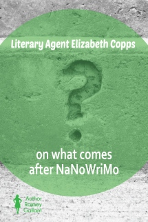 Literary Agent Elizabeth Copps on what comes after Nanowrimo #Nanowrimo #CampNanowrimo #authors