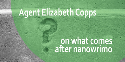 Literary Agent Elizabeth Copps offers advice on what comes after NaNoWriMo